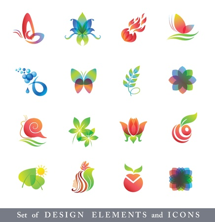 insect on leaf: Set of Design Elements and Icons.