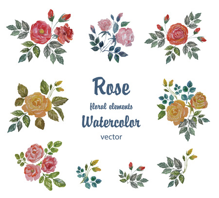 yellow vector: Watercolor Vector Set with Roses Branches for Decoration.