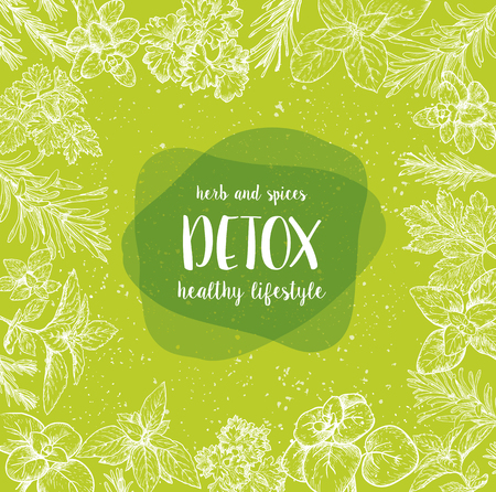 Detox Label. Herbs and spices tag. Engraving illustrations for packaging. Vector sketch of vegan food. Hand drawn graphic.