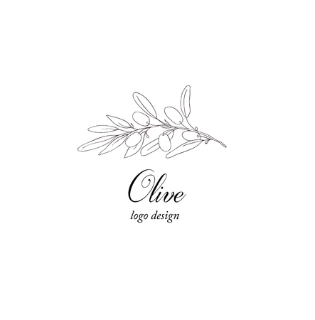 Olive plant branch. Greenery design element.
