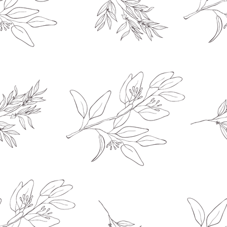 Seamless botanical line art pattern. Background with eucalyptus. Banque d'images - 123646061