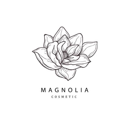 Fleur de magnolia. Élément de design floral dessiné à la main. Dessin au trait isolé sur fond blanc.