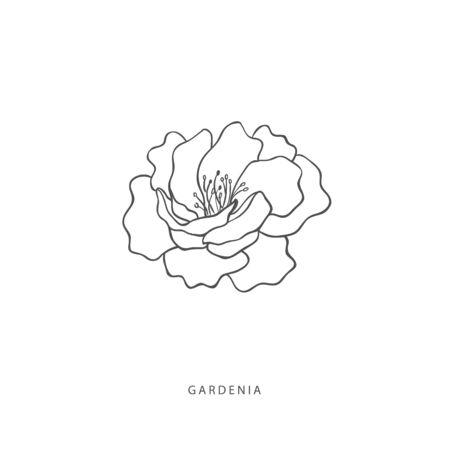 Hand drawn plant branches. Greenery design elements. Botanical logo of gardenia.