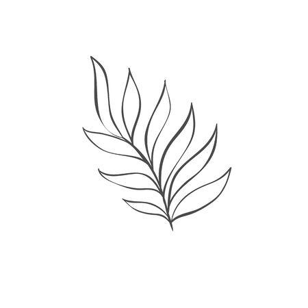 Hand drawn plant branches. Greenery design element. Botanical logo.