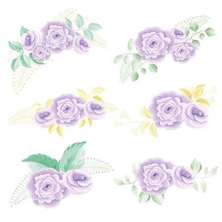 Purple rose with leaves bouquets floral vector