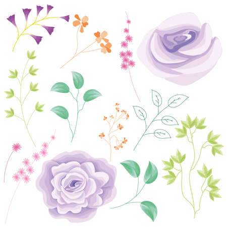 Original Filename: Beautiful purple rose set with additional leaves and flower