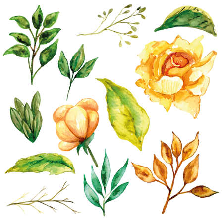 Yellow rose set and its leaves watercolor 矢量图像
