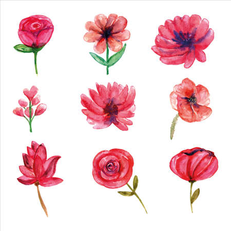Set of pink wild flower watercolor of spring season for greetings card or invitation card decorations