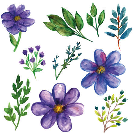 Purple wild plants with flower and leaves watercolor set for spring season