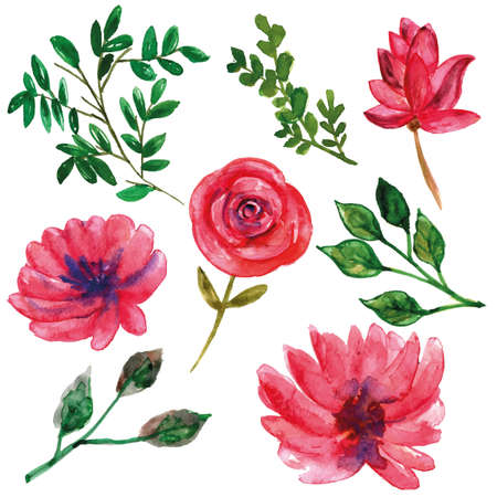 Wild pink flower with leaves watercolor set for decorations