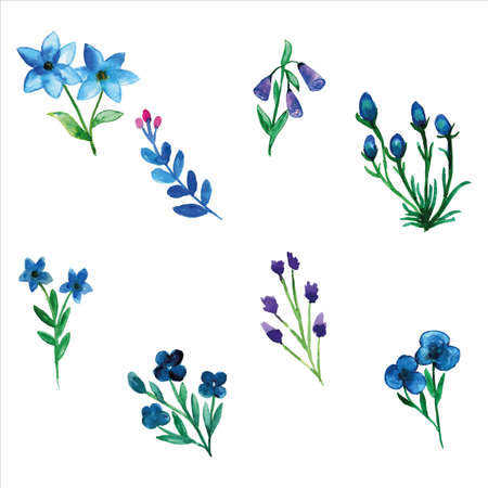 Set of blue wild flower watercolor of spring season for greetings card or invitation card decorations 矢量图像
