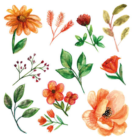 Orange flower with leaves and additional flower watercolor set for spring season decorations