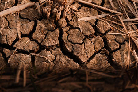 Dry and cracked soil after harvesting. Climate change concept, nature background Banco de Imagens - 154959965