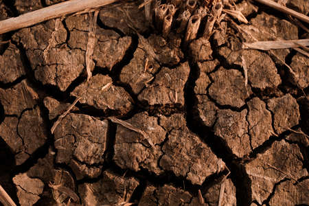 Dry and cracked soil after harvesting. Climate change concept, nature background Banco de Imagens - 154960065