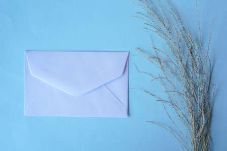white envelope with dried grass for greeting mockup seasonal concepts on blue background Banco de Imagens