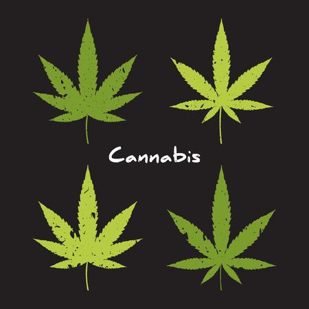 hoja marihuana: grunge icono cannabis. la mano de la marihuana medicinal dibuja elementos. Vectores