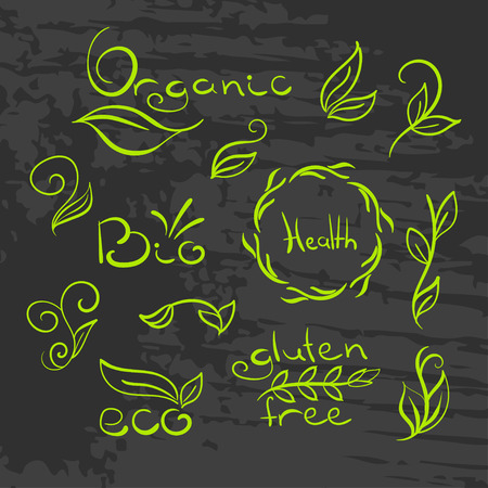 free hand: Organic, bio, ecology natural logotypes set. Gluten free hand drawn label. Hand drawing painting design template. Vector leaf.