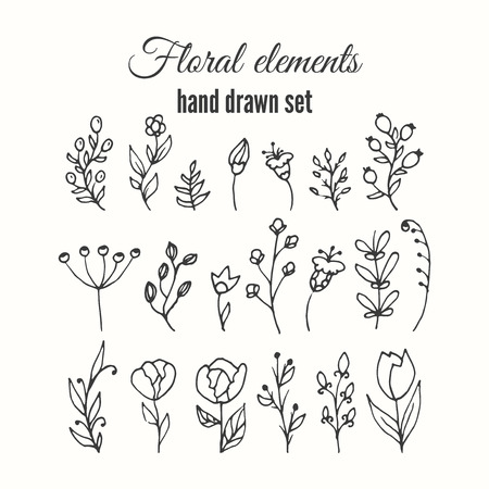 wild flowers: Vector floral decorative set. Herbs and wild flowers. Abstract hand skeched floral collection. Lovely flowers andd leaves branches for invitation card.