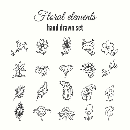 Vector floral decorative set. Herbs and wild flowers. Abstract hand sketched floral collection. Lovely flowers and leaves branches for invitation card.