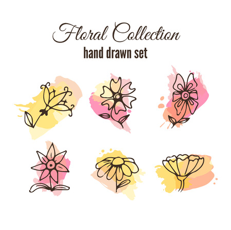 wild flowers: Vector floral decorative set. Colorful splashes under flower. Herbs and wild flowers. Abstract hand sketched floral collection. Cute flowers and leaves branches for invitation card.