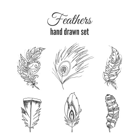 sketchy: feathers set. ethnic elements. Sketchy feather with ornate decoration. Illustration