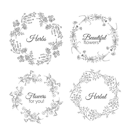 calendula: Herbs Illustration. Floral frames. Calendula, Cotton, Bindweed, Shaffran, Flax, Echinacea. Handdrawn Health and Nature collection. Vector Ayurvedic Set. Holistic Medicine. Healing plants.