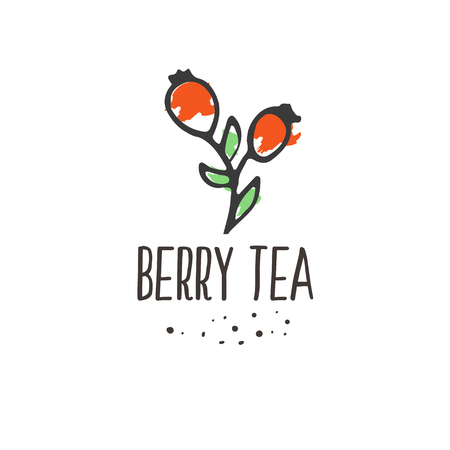 Berry tea print. Briar organic herbal hot drinks pakage design. Hand sketched herbs and flowers illustration collecton. Vector floral design.