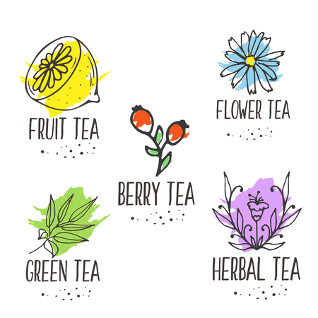 Herbal tea elements collection. Organic herbs and wild flowers. Hand sketched fruits and berries illustration. Flower and leaves branches. Floral vector design.