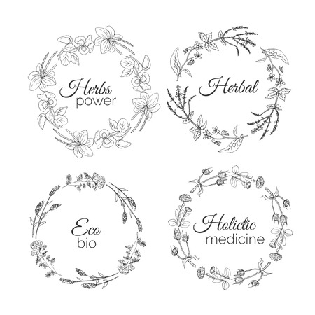 Herbs Illustration. Floral frames. Plantain, Meadow Sage, Pansy, Borage, Lavender, Teasel, Yarrow, Globularia Hand Drawn Health and Nature Set Vector Ayurvedic Plants and Spice