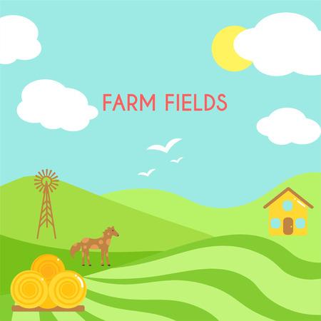 green fields: Farm fields landscape. Cartoon green field of sowing.
