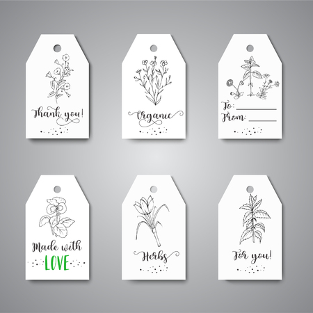 Tags with Herbs and Wild Flowers Hand drawn design with herbal tea, spices, medicinal, cosmetic plants Vector illustration