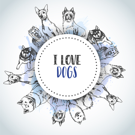 Background with Hand drawn dogs breeds. Sketch of dog. Poster with I love Dog text French bulldog, dachshund, Husky, Yorkshire Terrier Illustration