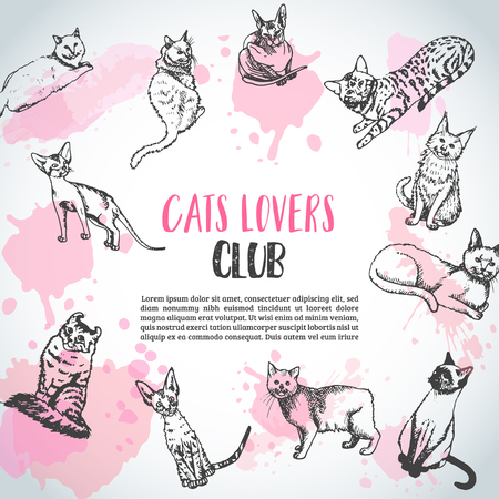 Background with cat breeds. Cats lovers club Vector illustration Cute kitten sketch. Pet care newsletter Illusztráció