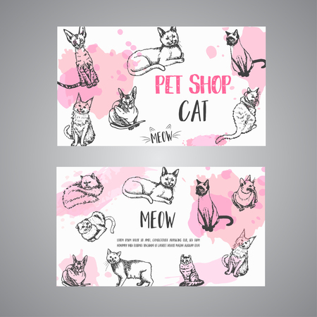 Pet shop business card with cats. cat meow text Vector illustration Cute kitten sketch. Pet care banner