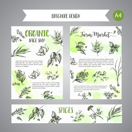 Herbs and spices background. Herb, plant, spice hand drawn set. Organic garden herbs engraving. Botanical sketches. Garlic, ginger, cloves and onion vector