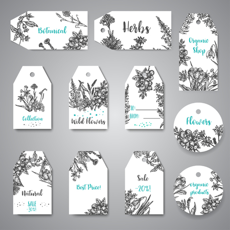 Hand drawn herbs and wild flowers tags Vintage collection of Plants Vector illustrations in sketch style. Ilustrace