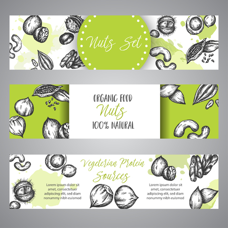 Nuts and Seeds banner set hand drawn vector illustration with Healthy food poster Vintage drawing
