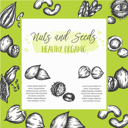 Nuts and Seeds background collection hand drawn vector illustration with Nuts and Seeds elements, Vintage retro style Ilustrace