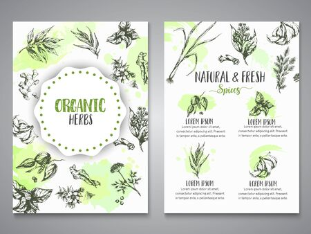 Herbs and spices posters. Herb, plant, spice hand drawn banners, menu elements. Organic garden herbs engraving. Botanical sketches. Garlic, ginger, cloves and onion vector
