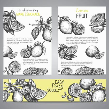 Lemons Brochure collection hand drawn vector illustration with leaves, Vintage yellow background Whole lemon, sliced pieces, half, leafe and peel