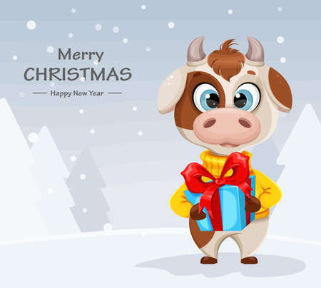 Merry Christmas greeting card with funny bull holding gift box. Cute bull cartoon character in sweater, the symbol of Chinese New Year 2021. Vector illustration