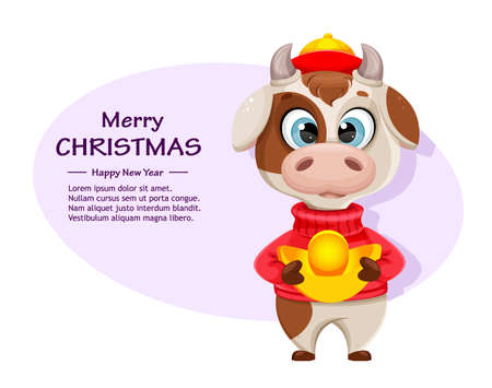 Merry Christmas greeting card with funny bull. Cute bull cartoon character in sweater, the symbol of Chinese New Year 2021. Vector illustration