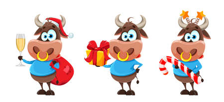 Cute bull, the symbol of Chinese New Year, cartoon buffalo, set of three poses. Merry Christmas 2021. Vector illustration for holiday