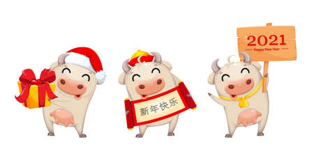 Cute cow, funny cartoon character, set of three poses. Chinese New Year of Bull 2021. Lettering translates as Happy New Year. Vector illustration