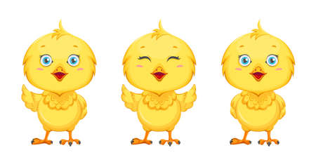 Cute little chick, set of three poses. Funny baby chicken. Stock vector illustration on white background 일러스트