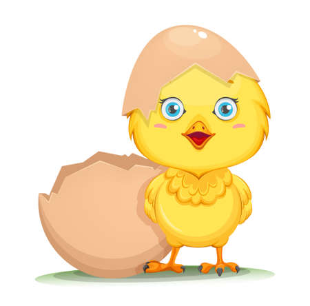Cute little chick hatched from an egg. Happy Easter. Funny baby chicken in shell. Stock vector illustration