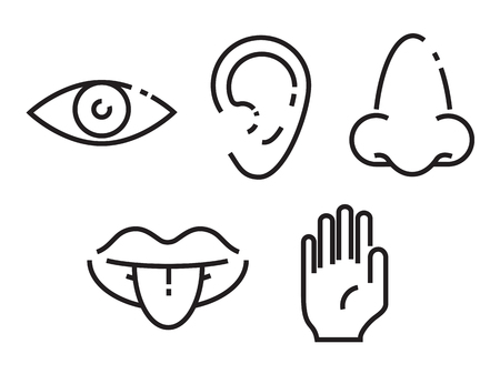 Icon set of the five human senses Ilustrace