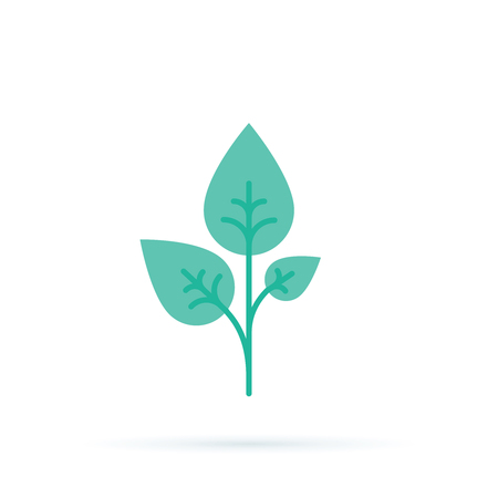 Three Green sprouts, sprigs, raw with silhouette leaf. Icon Isolated on white. Logo for eco company, agriculture. Illustration
