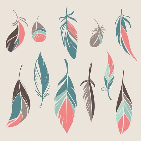 softly: Set of different hand drawn feathers. Vector illustration Illustration