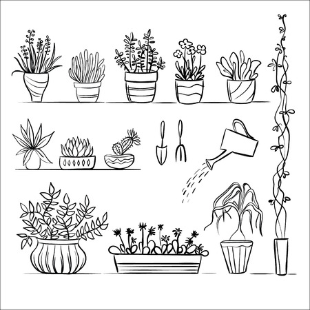 Potplanten en gereedschappen schetsen. Hand tekenen set
